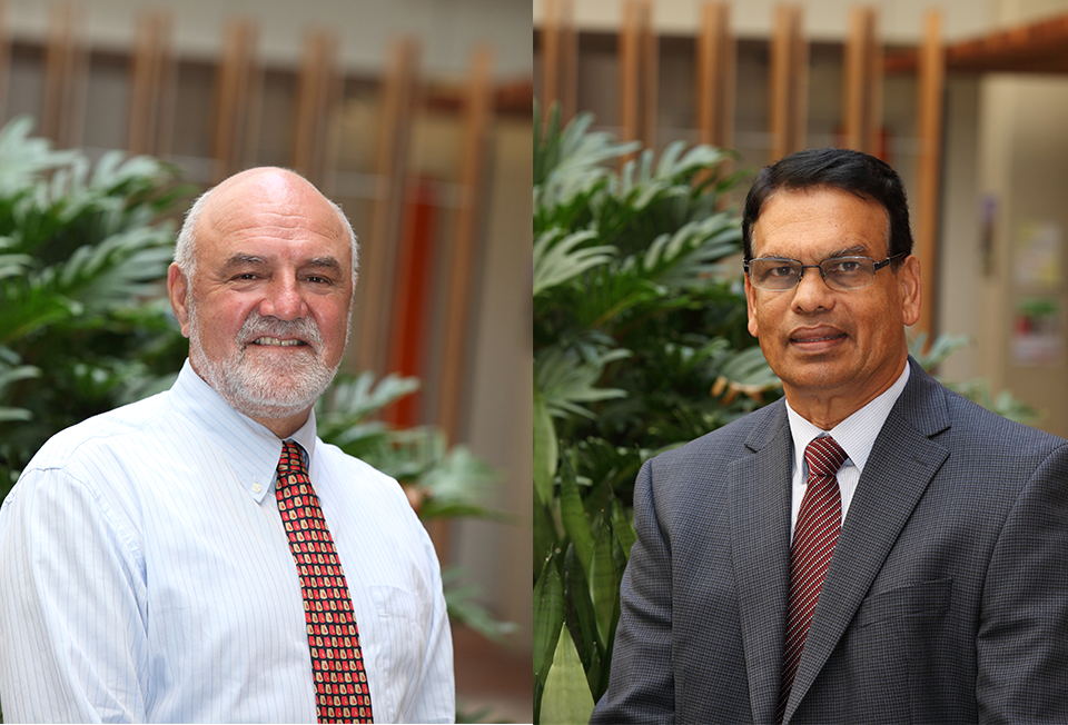 Professor Peter Liesch & Associate Professor Jay Weerawardena