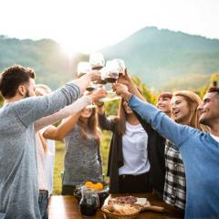 Group of people clinking glasses together in a vineyard